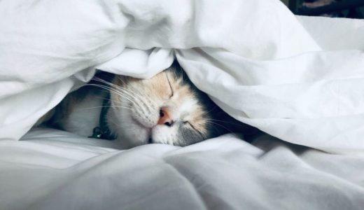 眠れない時はノートを書くだけでスッキリ眠れちゃいます!